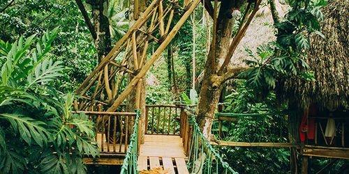Забронировать Dominican Tree House Village