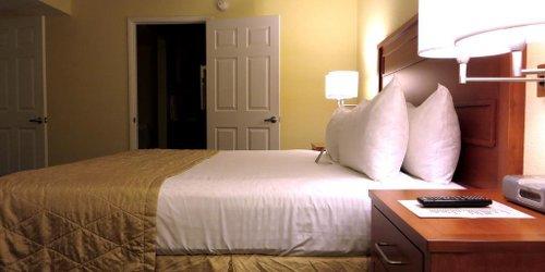 Забронировать Desert Paradise Resort