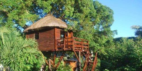 Забронировать Tree Lodge Mauritius