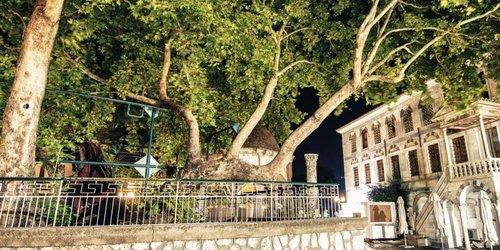 Забронировать Alexandra Hotel