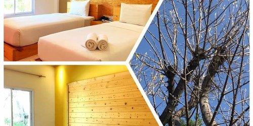 Забронировать Arcadia Resort