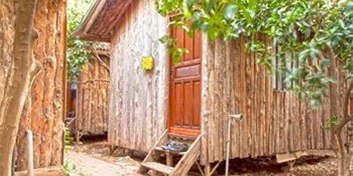 Забронировать Bayrams Tree Houses