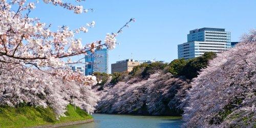 Забронировать The Westin Tokyo