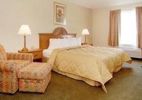 фото Comfort Inn & Suites Houma 1207813977
