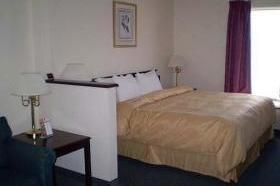 фото Comfort Suites 1208244746