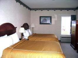 фото Comfort Suites 1209152467
