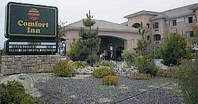фото Comfort Inn (Marina) 1209559601