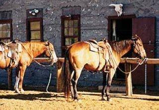 фото Ranch At Ucross 148478288