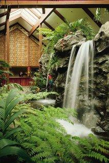 фото Catamaran Resort Hotel and Spa 151484960