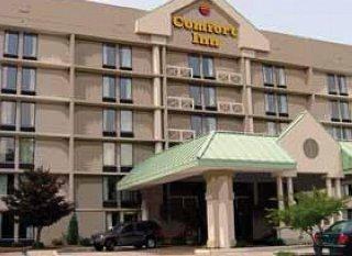 фото Comfort Inn Executive Park 151602769