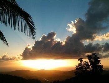 фото El Hotelito at The Rainforest Experience Farm 1518159412