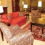 фото La Quinta Inn & Suites Lindale 1560379536