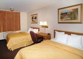 фото Comfort Inn Hotel 1729423746