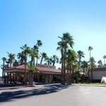 фото Quality Inn Airport Hotel 227923549
