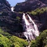 фото Best Western Mountain View Inn 227967653