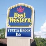 фото Best Western Plus Turtle Brook Inn 227971495