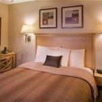 фото Hawthorn Suites by Wyndham 227986126