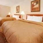 фото Comfort Inn 228011038