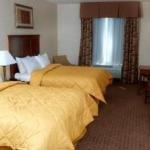 фото Comfort Inn & Suites Kent 228012371