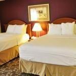 фото Comfort Inn & Suites Apt 228012969