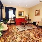фото Comfort Inn & Suites Lee `S Summit 228013727