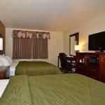 фото Comfort Inn Midtown 228014571