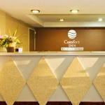 фото Comfort Inn 228018073