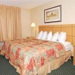 фото Comfort Inn Moline 228019893