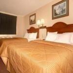 фото Comfort Inn 228022951