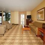 фото Comfort Suites Cullman 228025765