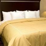 фото Comfort Suites 228027221