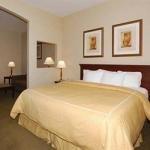 фото Comfort Suites Stafford 228028212