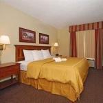 фото Comfort Suites Sumter 228028303