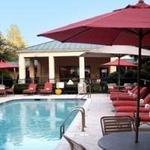 фото Courtyard Dallas Plano in Legacy Park 228042974