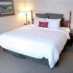 фото Crowne Plaza North Star Hotel 228052812