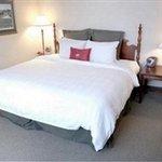 фото Crowne Plaza North Star Hotel 228052815