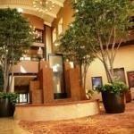 фото Embassy Suites Minneapolis - North 228132727