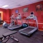 фото Embassy Suites San Rafael - Marin County 228133455