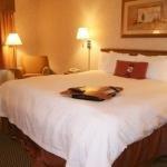 фото Hampton Inn Fort Collins 228252136