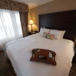 фото Hampton Inn & Suites Savannah Historic District 228260508