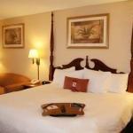фото Hampton Inn Orlando-Maingate South 228261240