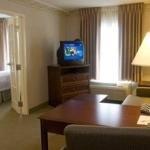 фото Hampton Inn - Suites Newport-M 228262762