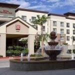 фото Hilton Garden Inn Phoenix/Avondale 228281612