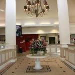 фото Hilton Garden Inn Cincinnati/Sharonville 228282556