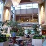 фото Hilton Los Angeles/Universal City 228291031