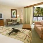 фото Hilton Waikoloa Village 228294596