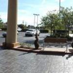 фото Holiday Inn Express Lexington Southwest Nicholasville 228326947