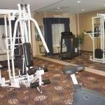 фото Holiday Inn Express Tower Center New Brunswick 228333566