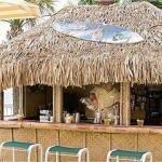 фото Holiday Inn Oceanfront at Surfside Beach 228343308