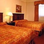фото Hotel Newton 228442117